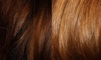 25 Ways You Can Use Hydrogen Peroxide That You Never Knew Page 4 Of 26 Wrapped In Rust Lightening Dark Hair How To Lighten Hair Lighten Hair With Honey