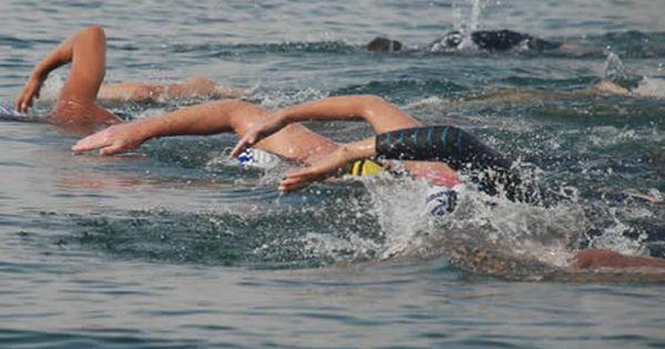 Open Water Swim Technique: Work Less, Swim Faster