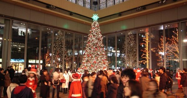 Events denver co kid events pinterest tree lighting holiday