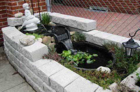 Estanque tortugas jardin buscar con google tortugas for Mini estanques caseros