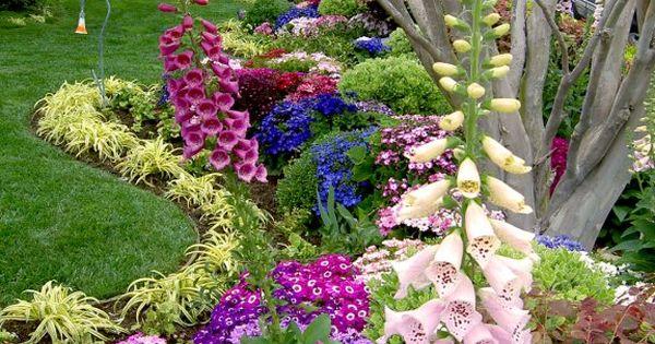 Charming Cottage Garden