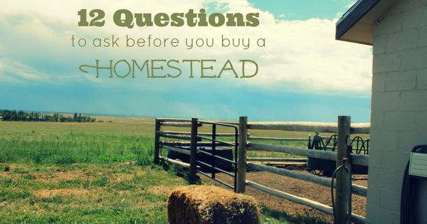 12 questions to ask before buying homestead property keep in survival and will have. Black Bedroom Furniture Sets. Home Design Ideas