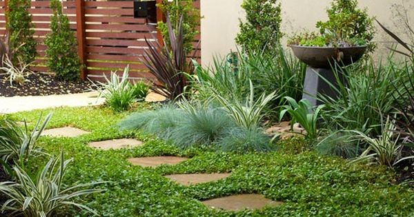 Flagstone Filler Plants : Diy garden path with random shaped flagstones and ground