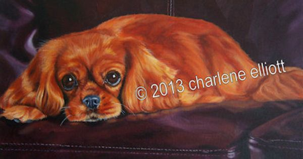 11 X 14 Sunny Www Charleneelliott Com With Images Cavalier King Charles Cavalier King Charles Spaniel King Charles