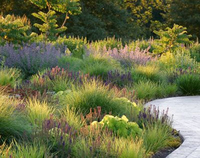 Adam woodruff creating a native planting design style for Adam woodruff garden designer