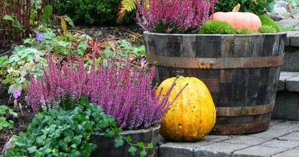 arrangements de plantes d automne en tant que d co florale tonneau en bois lierre et tonneaux. Black Bedroom Furniture Sets. Home Design Ideas