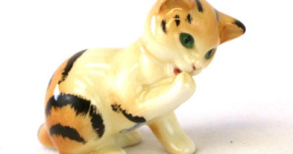 Video Cat S