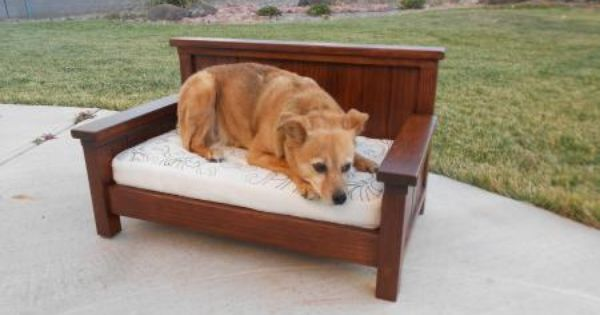 doggie daybed or toddler couch do it yourself home projects from ana white furniture plans. Black Bedroom Furniture Sets. Home Design Ideas