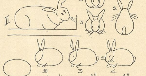How to draw rabbit - french art tutoriald
