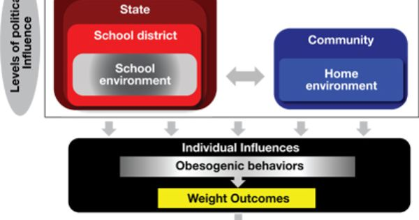 Social Ecological Framework Regarding Health School Nutrition