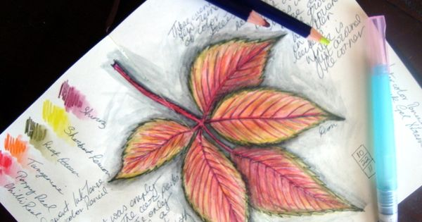 Watercolor Pencil Mysteries Revealed -- Just love the blending, leaves would be