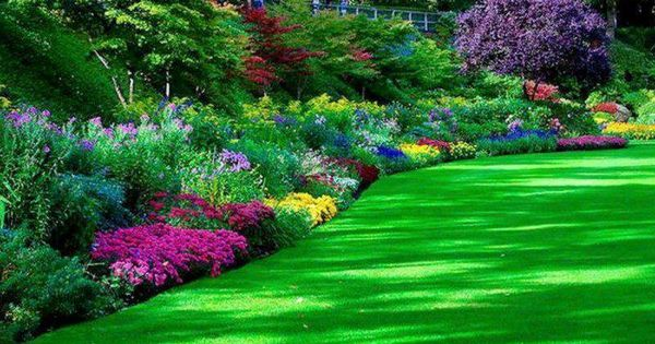 0979664a43a9754232885246a1ca7b81 Ideas For Backyard Flower Beds on flower bed borders, flower bed ideas for restaurant, flower landscaping ideas, flower bed ideas for summer, flower bed plans, flower bed design ideas, flower landscape, flower bed ideas for side of house, flower garden, flower bed layouts,
