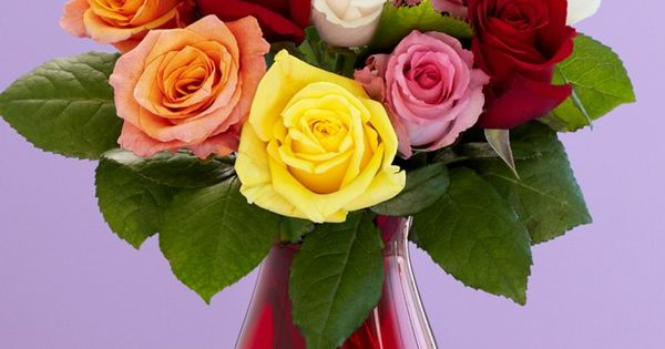 proflowers coupons free shipping code