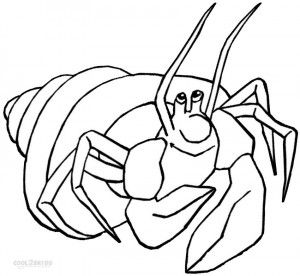 Hermit Crab Coloring Pages Coloring Pages Coloring Pages For