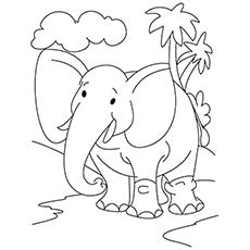 Top 20 Free Printable Elephant Coloring Pages Online Elephant Coloring Page Jungle Coloring Pages Elephant Colouring Pictures