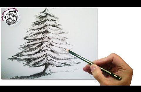Como Dibujar Un Abeto O Arbol De Navidad Realista Paso A Paso A Lapiz Tecnicas De Dibuj Arbol A Lapiz Dibujos A Lapiz De La Naturaleza Arboles Dibujos A Lapiz