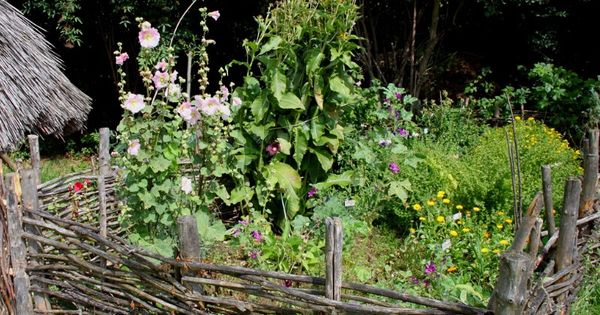 la permaculture un jardin potager sans entretien jardin pinterest permaculture and gardens. Black Bedroom Furniture Sets. Home Design Ideas