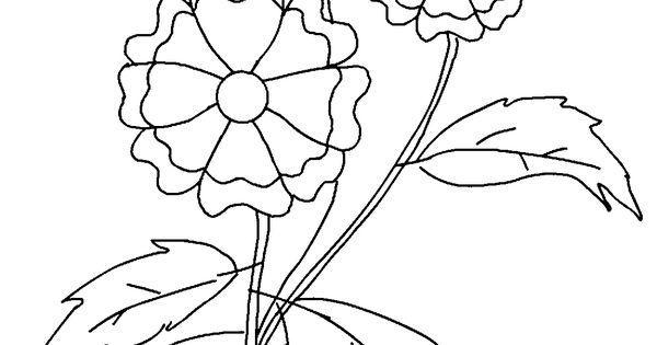 Plantillas de flores para colorear e imprimir dibujos para colorear pinterest - Coloriage fleur britto ...