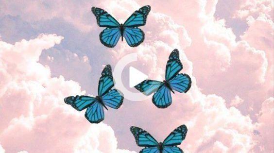 P Pinterest Ana Cartolano Instagram Anacartolano Ana In 2021 Iphone Wallpaper Pattern Butterfly Wallpaper Iphone Butterfly Wallpaper