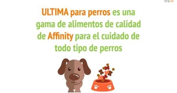 Video Piensos Ultima Perros Perro Pienso Affinity Mascotas
