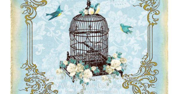 french vintage bird cage cage d 39 oiseau fleur pinterest. Black Bedroom Furniture Sets. Home Design Ideas