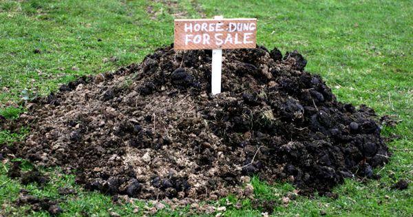 Composting Horse Manure As A Revenue Source Farm Ranch Homestead Pinterest Horse Manure