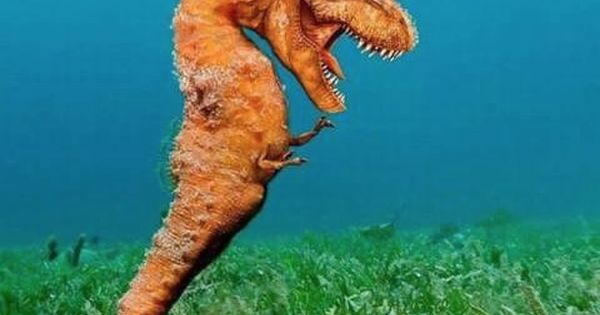 T-Rex -o- Seahorse -- best funny pictures walmart humor ...