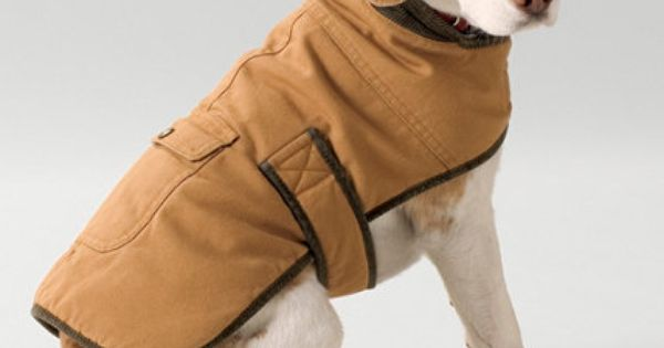 For Winter Warmth Field Coat For Dogs Dog Jackets L L
