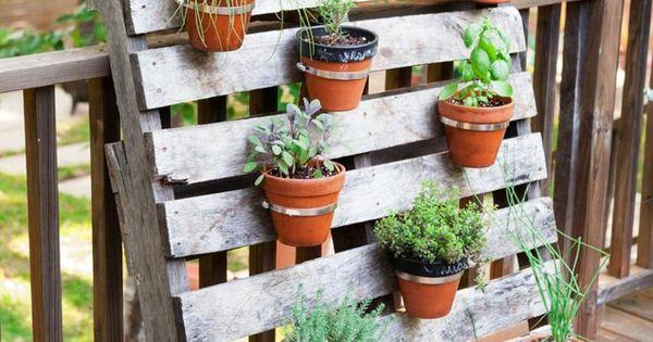 Topfpflanzen garten pflanzen palette diy ideen garten - Topfpflanzen garten ...