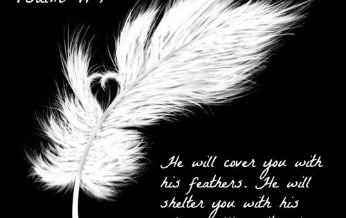 Psalm 91 4 He Will Cover You With His Feathers He Will