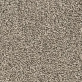 Shop Shaw Reclaim Heirloom Textured Indoor Carpet At Lowes Com