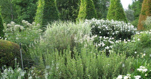 Le jardin de ch neland parc floral d 39 apremont sur allier for Apremont sur allier jardin