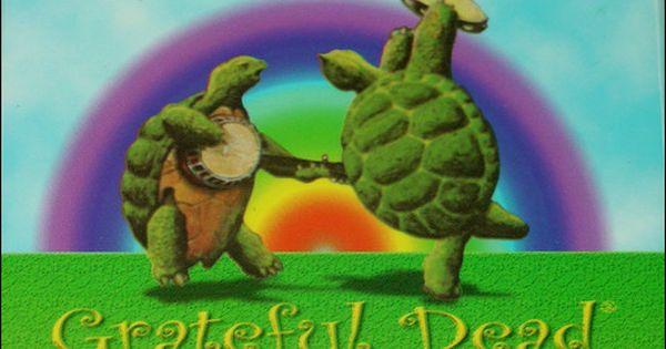 Grateful Dead Dancing Turtle Grateful Dead Grateful Dead Merchandise Turtle