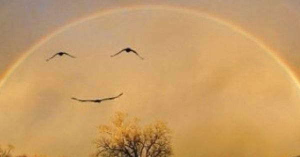 Can you see God's smile in this photo of clouds, birds and