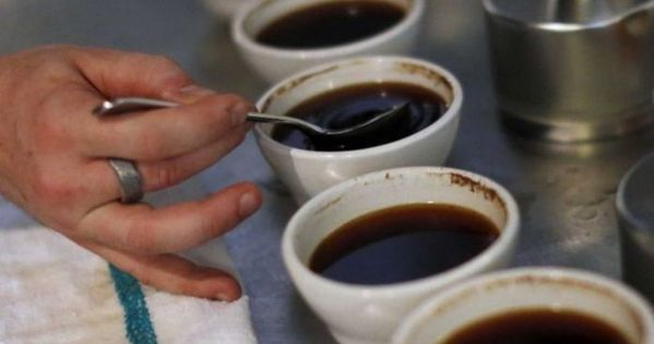 Dosta Su Vas Lagali I Varali Raskrinkani Mitovi O Zdravlju U Koje Svi Slijepo Vjeruju In 2019 Coffee Drinks Coffee Nutrition Blue Bottle Coffee