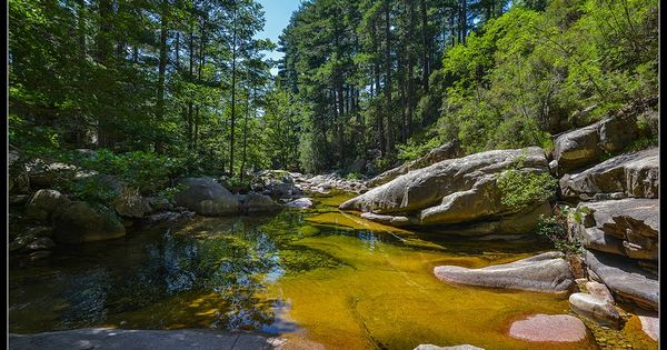 Piscine naturelle for t d 39 aitone corse riviere pinterest piscines naturelles for t et - Piscine naturelle corse ...
