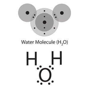Multimedia Represent Bonding With Lewis Dot Diagrams Chapter 4 Lesson 6 Middle School Chemistry In 2020 Water Atom Middle School Chemistry Covalent Bonding