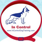 Keep Your House Clean With New Orleans In Control Dog Training