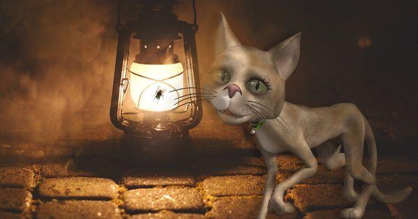 Tapete Katze Lampe Kunst Fliege Tapeten Katzen Kunst