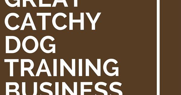 41 Great Catchy Dog Training Business Names Training