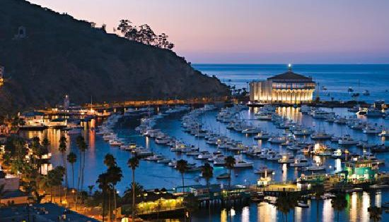 Catalina Island Ca My Sisters Took Us To This Island Off