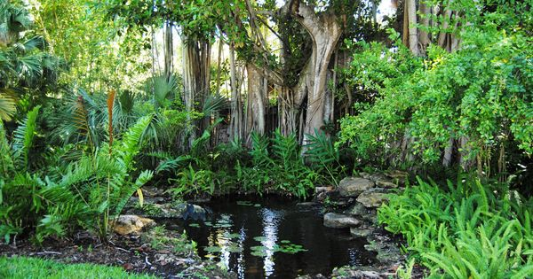 Tropical Waterfall And Pond Florida Travel Mckee