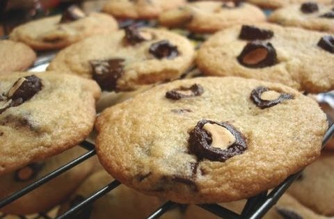 Cookies, Dia de and Youtube on Pinterest
