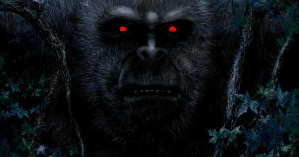Red Eyed Bigfoot A Cryptid Mystery Pinterest Eyes