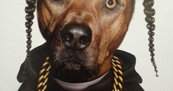 Snoop Doggie Dog- @Mandy Meredith- How about this for Cash$'s next Halloween