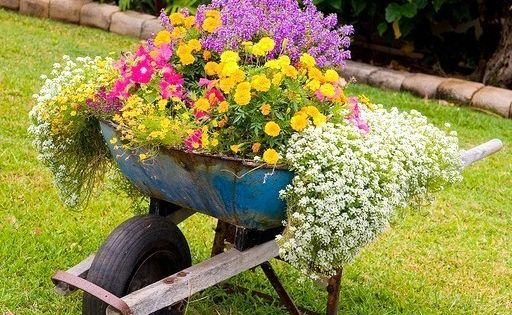 Les brouettes fleuries du jardin jardin pot pinterest for Brouette jardin