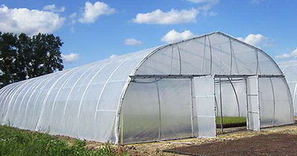 Greenhouse Plastic Clear 4 Year 6 Mil Poly Film Cover Multiple Sizes Greenhouse Cold Frame Garden Structures