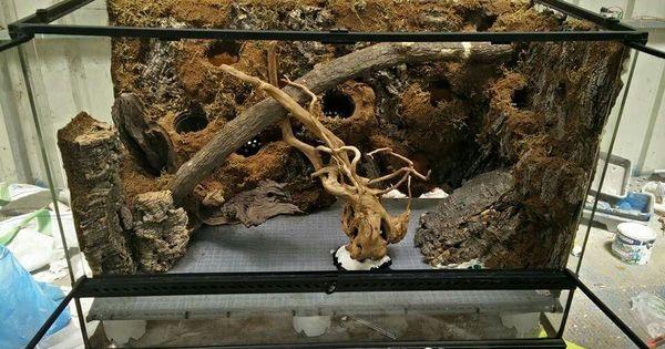 False Bottom Drool Reptile Fish And Amphibian Tanks