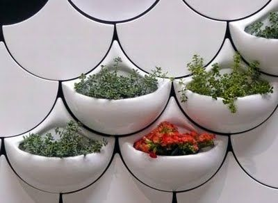 Kitchen wall tiles... great for an herb garden or stashing small necessities!