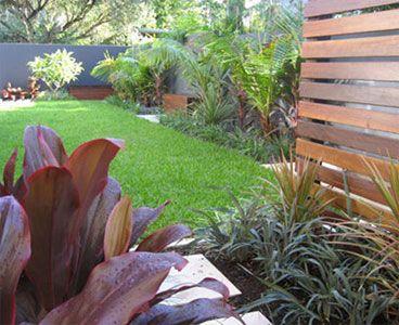 Balmoral Garden Photo Utopia Landscape Design Brisbane Qld Garden Landscape Design Tropical Landscape Design Front Yard Garden Design